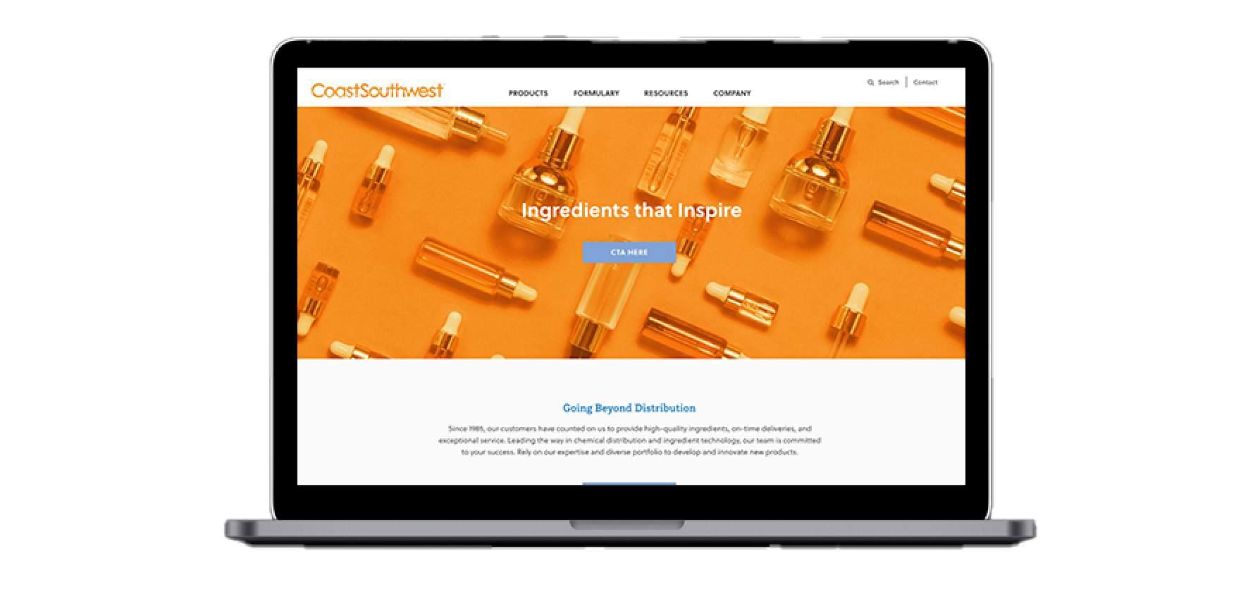 CSW Website